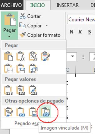 Imagen Vinculada